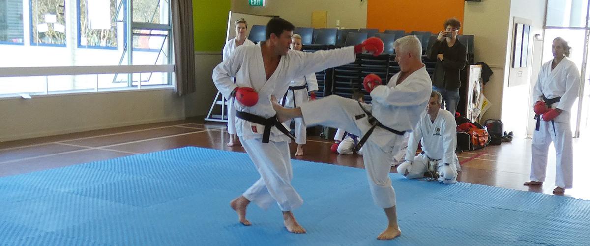 karate-seminar