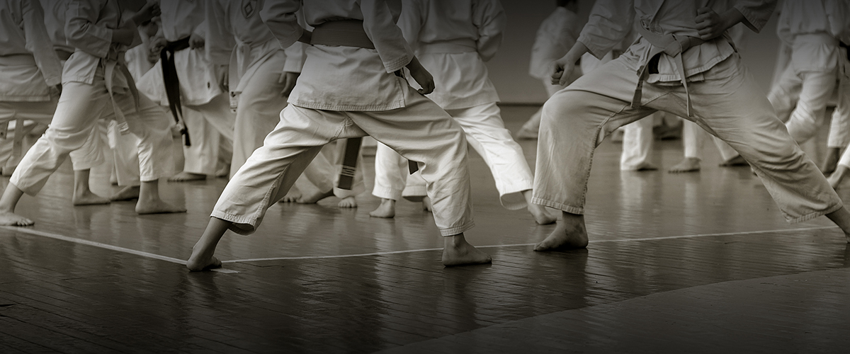 shotokan-karate-training-new-zealand